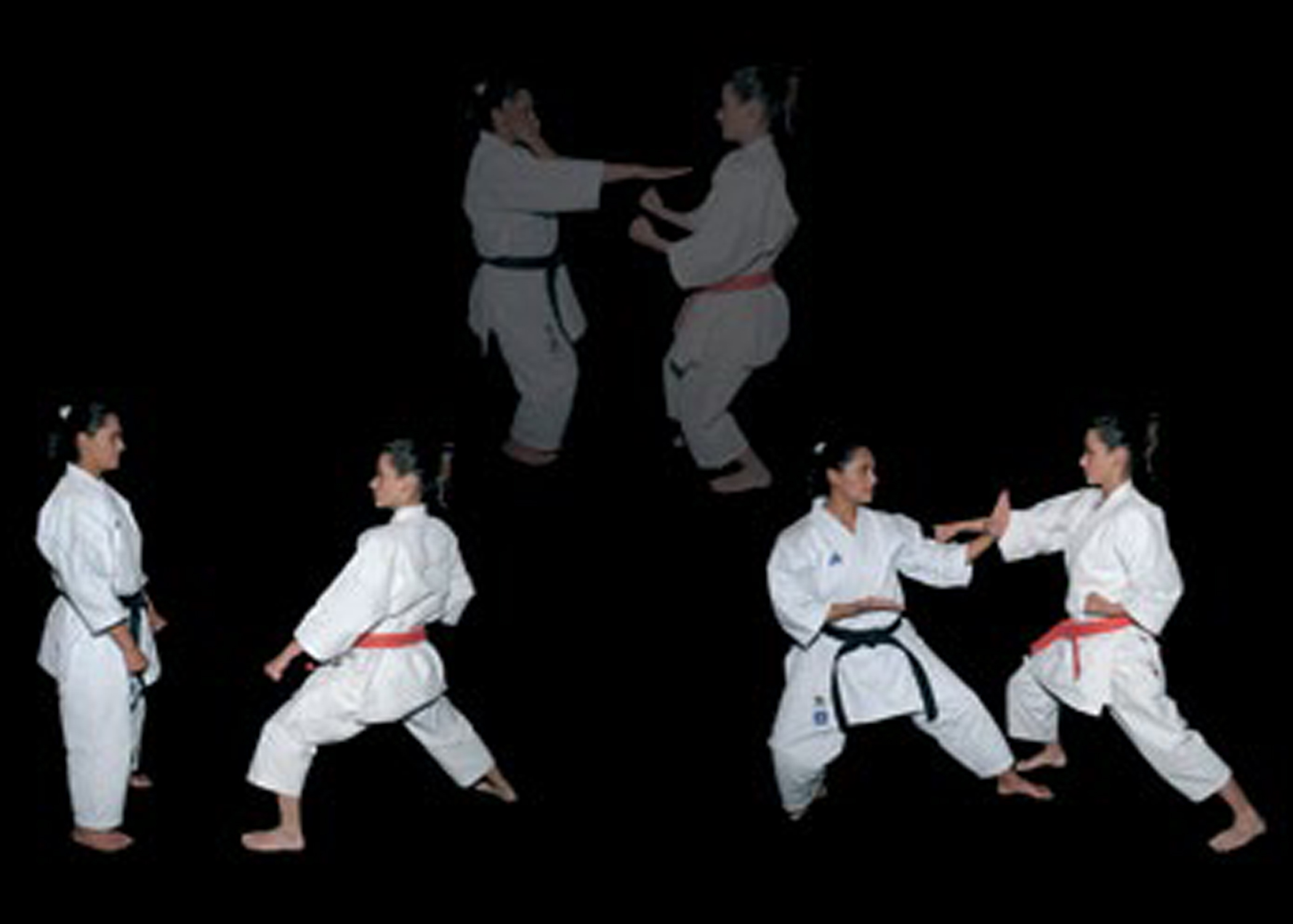 Classical instruction: one-step kata drills (Wikimedia Commons)