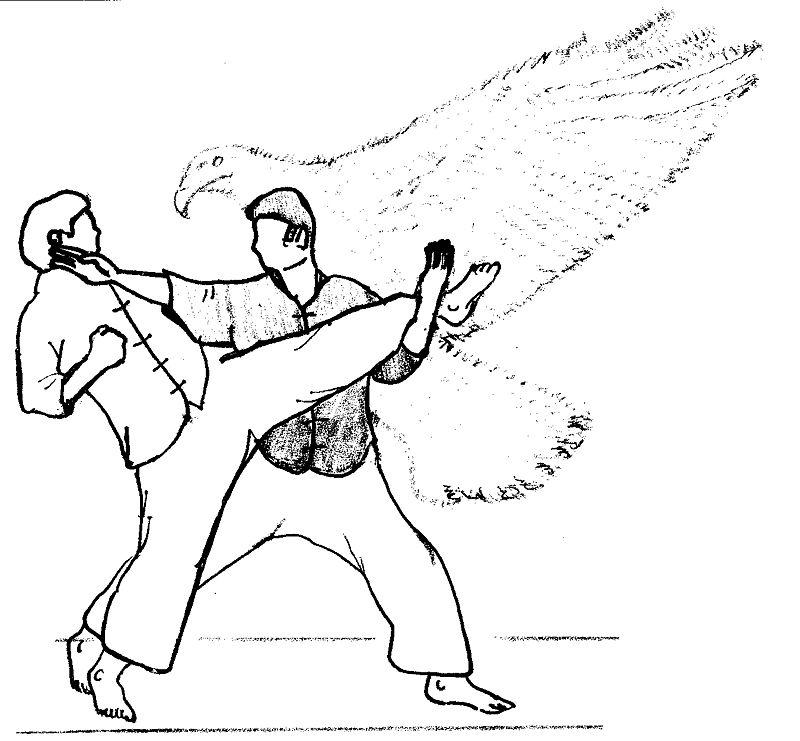 (Bando Eagle technique, photo via wikipedia commons)